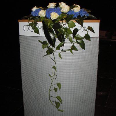 Puhujankorokkeen sini-valkoinen kukkakoriste