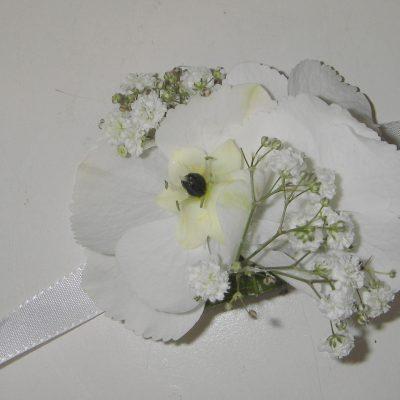 Herkkä valkoinen rannekukka