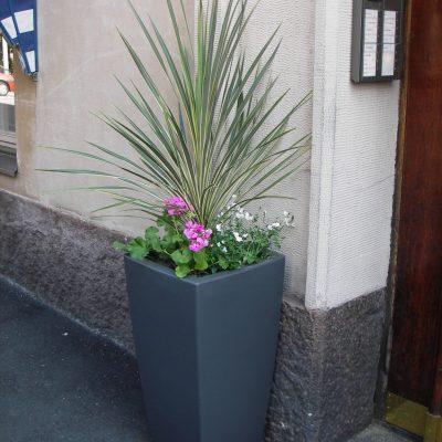 Ulko-oven kukkaistutus